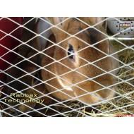 Кролефермы для кроликов породы Рекс